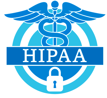 Vendor company for IT ISO27001 PCIDSS HIPAA Audits, Process
